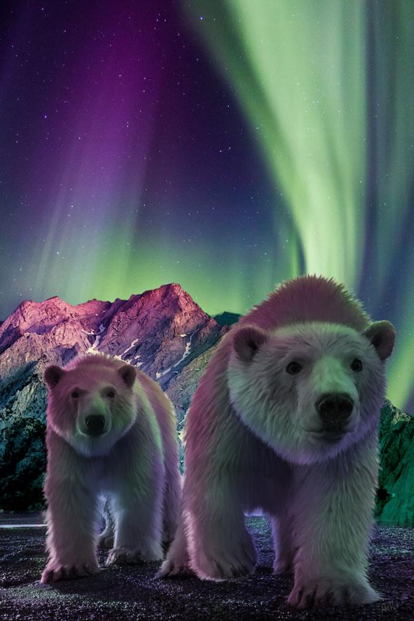 Polar-Duo